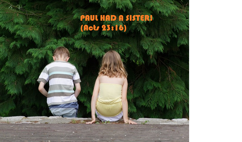 review-paul-had-a-sis