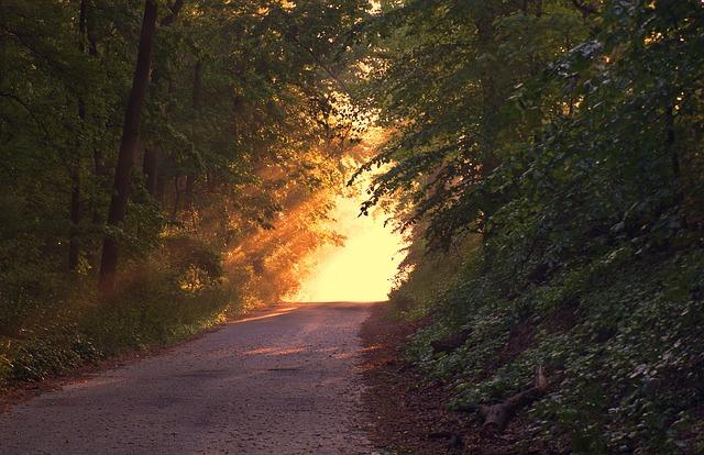 sunlight-166733_640